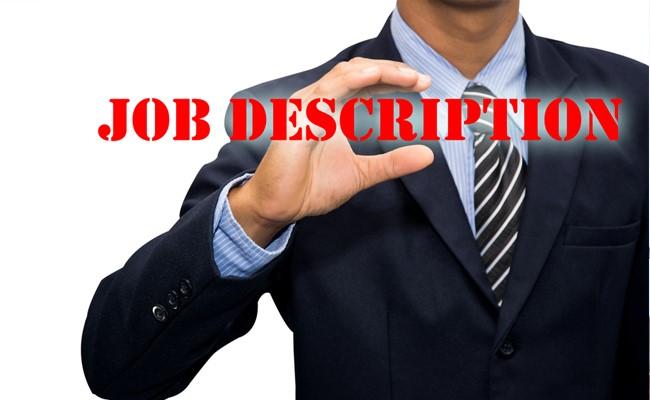 Resume Management System